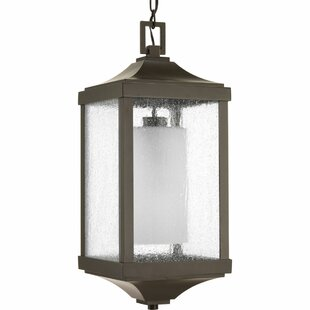 Aashish 1-Light Outdoor Hanging Lantern