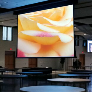 Paragon/Series V White Electric Projection Screen