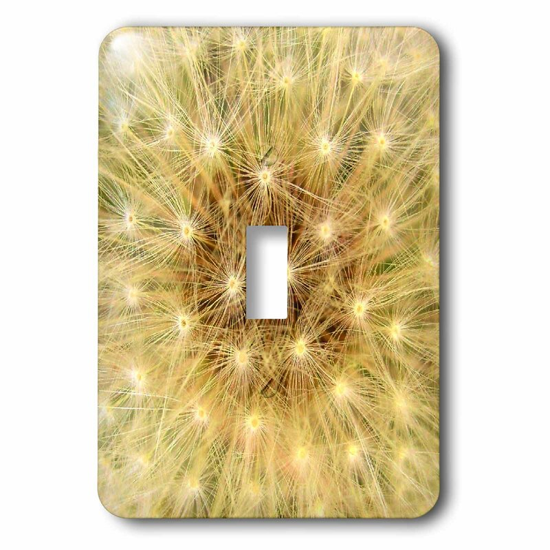 3drose Pastel Dandelion 1 Gang Toggle Light Switch Wall Plate Wayfair