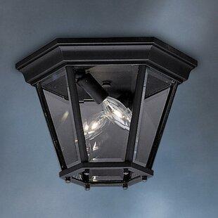 Darby Home Co Jerins 2-Light Flush Mount