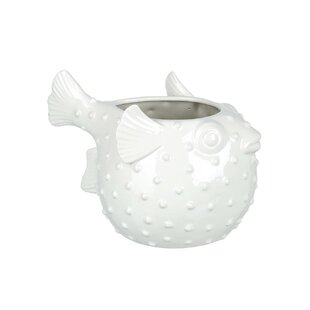 Abigayle Ceramic Cachepot By House Of Hampton