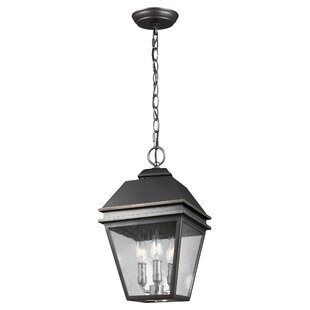 Purchase Daughtrey 3-Light Outdoor Hanging Lantern By Three Posts