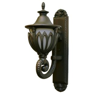 Alcott Hill Phillipstown 1-Light Outdoor Sconce