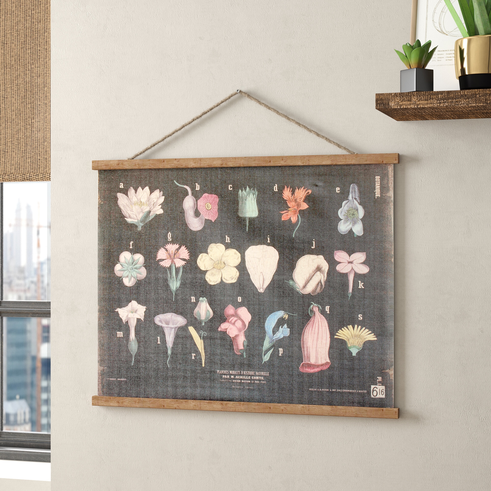 Hohl Scientific Botanical Linen And Wood Scroll Wall Hanging