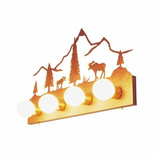 Steel Partners Moose Mountain 4-Light Bath Bar