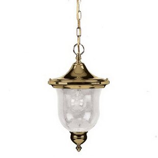 Baileyville 1-Light Outdoor Hanging Lantern by Charlton Home