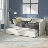 Rex Twin Daybed with Trundle by Rosecliff Heights