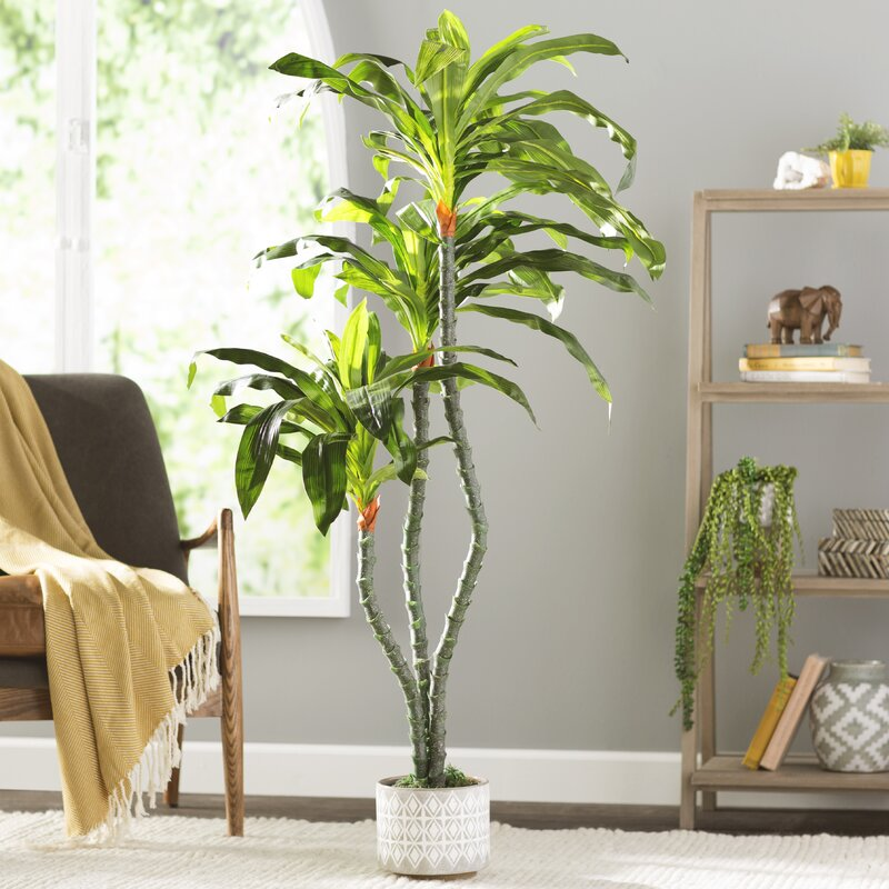 Artificial Dracaena Floor Plant in Tapered Pot