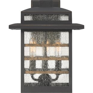 Gracie Oaks Vieira 3-Light Outdoor Lantern