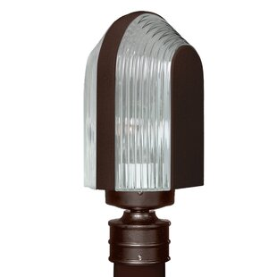 Donnie 1-Light Lantern Head by Latitude Run