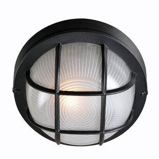 Williamsfield Outdoor Bulkhead Light