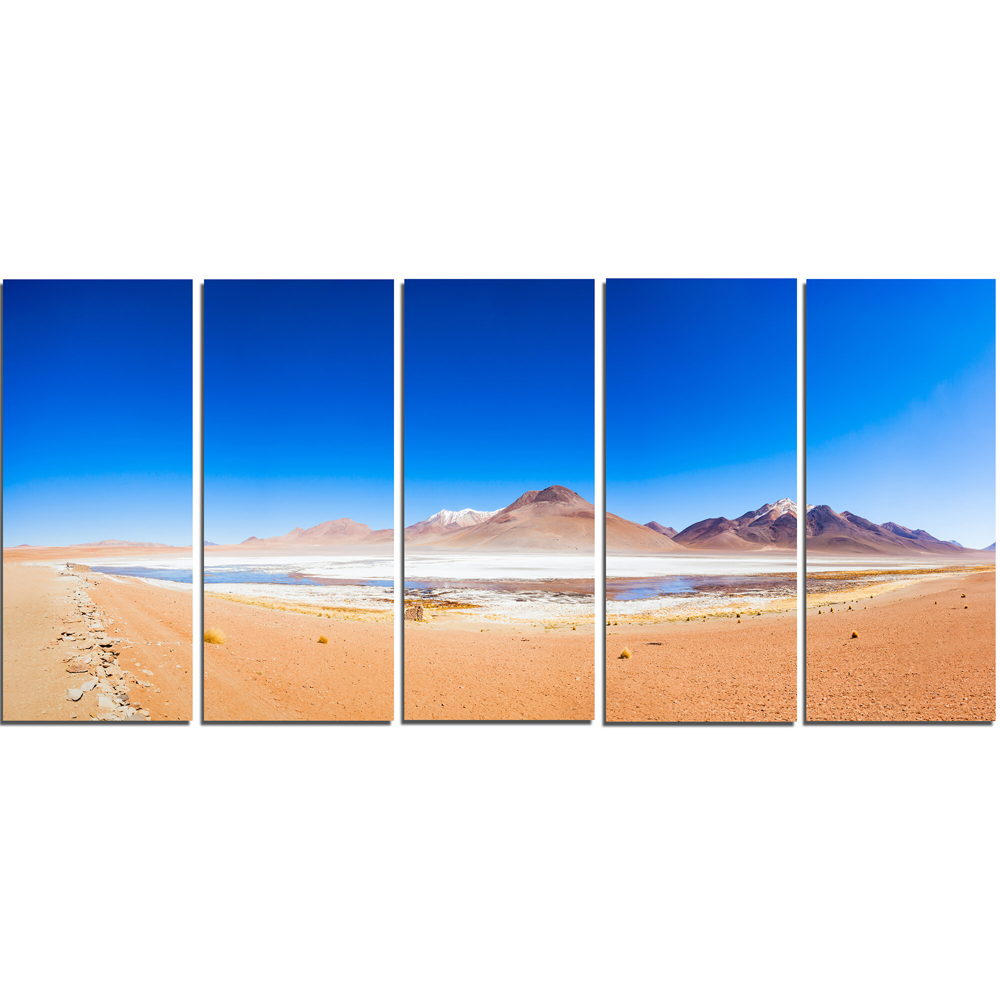 Designart Bolivia Altiplano Lake Panorama 5 Piece Wall Art On Wrapped Canvas Set Wayfair