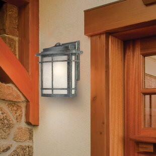 Buying Womack 1-Light Outdoor Wall Lantern By Three Posts
