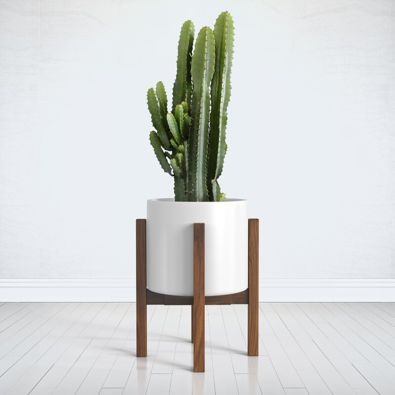 Square Modern Plant Stand
