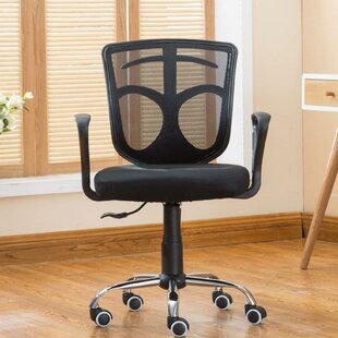 Lederer Mesh Task Chair