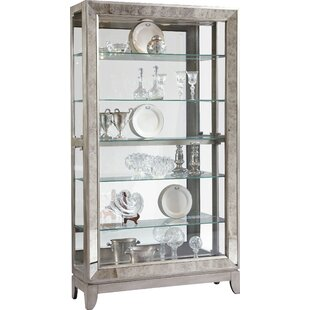 Willa Arlo Interiors Acubens Lighted Curio Cabinet