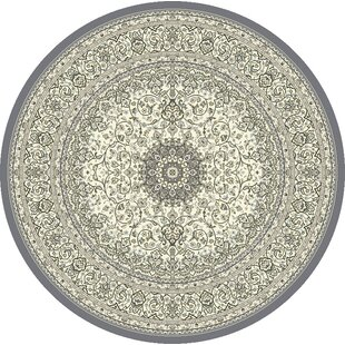 Attell Oriental Cream/Gray Area Rug by Astoria Grand