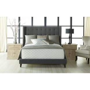 August Grove Estancia Upholstery Bed
