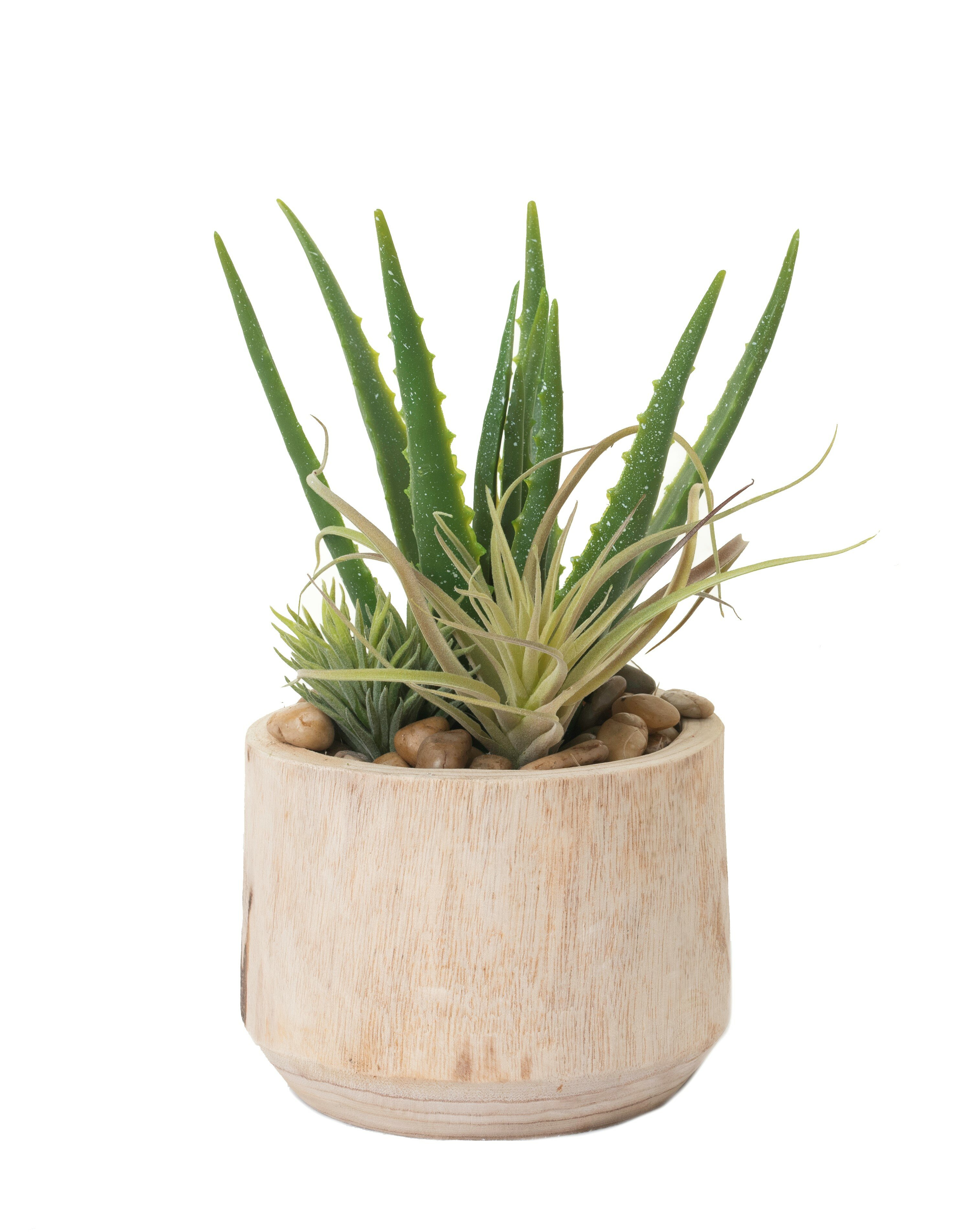 Foundry Select 14 Artificial Foliage Succulent In Planter Wayfair