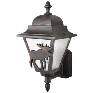 Reviews Penfield 1-Light Outdoor Sconce By Alcott Hill