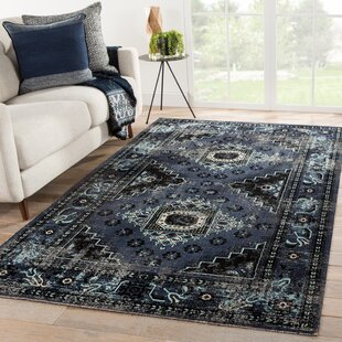 Janicki Medallion Black/Blue Indoor/Outdoor Area Rug
