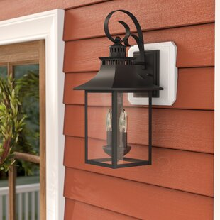 Sol 72 Outdoor Caswell 2-Light Outdoor Wall Lantern