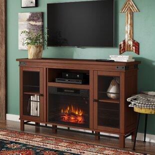 Alfson Media Electric Fireplace Loon Peak