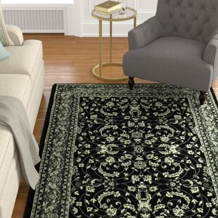 Zoel Black/Gray Area Rug By Darby Home Co