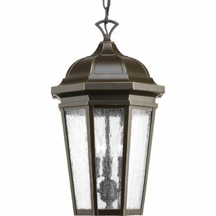 Edgewater 3-Light Outdoor Hanging Lantern By Alcott Hill Outdoor Lighting