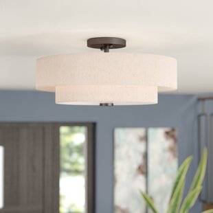 Dundee 4 Light Semi Flush Mount by Ivy Bronx