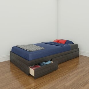 Maryjo Storage Platform Bed