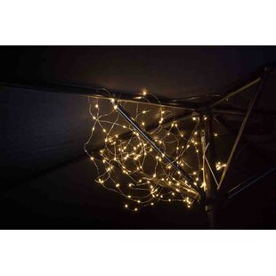 Husband 150-Light Fairy Light By Sol 72 Outdoor