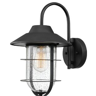 Mosqueda LED Outdoor Sconce