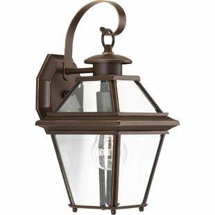 Gunnora 1-Light Outdoor Wall Lantern