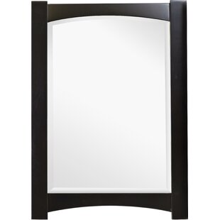American Imaginations Transitional Wall Accent Mirror