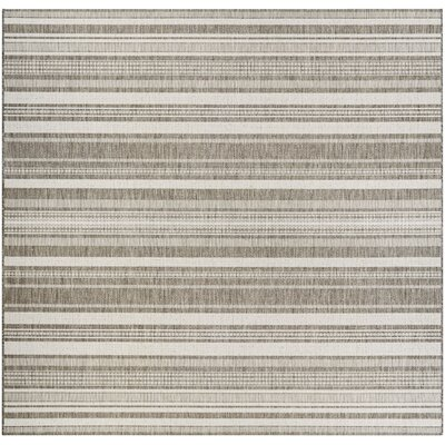 Brown Amp Tan Square Area Rugs You Ll Love In 2020 Wayfair