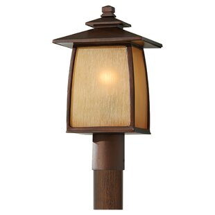 Yucca 1-Light LED Lantern Head By Loon Peak Outdoor Lighting