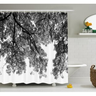 Bryes Photograph of Trees From The Ground With Branches and Leaves Art Image Single Shower Curtain
