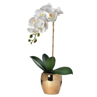 Orchid Stem Faux Flowers You Ll Love In 2021 Wayfair