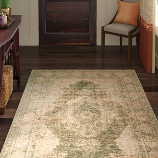 Carnforth Sage/Creme Area Rug By World Menagerie