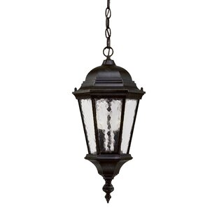 Compare & Buy Brook Lane 2-Light Outdoor Hanging Lantern By Darby Home Co