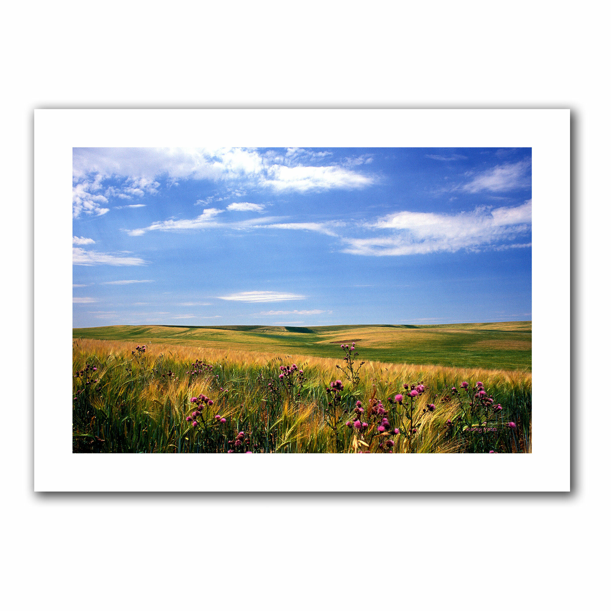 Artwall Field Of Dreams Print On Rolled Canvas Wayfair