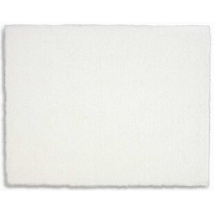 Affordable Price Chicago Solid Handmade Shag White Area Rug By Calvin Klein