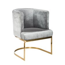 Hazel Gold Chrome Chair (Set of 2) by Statements by J