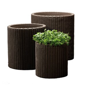 3-Piece Moriah Plastic Pot Planter Set