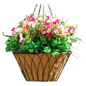 Nova Steel Hanging Planter