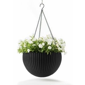 Rory Plastic Hanging Planter (Set of 2)