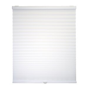 Danica Light Filtering Cordless Pleated Shade