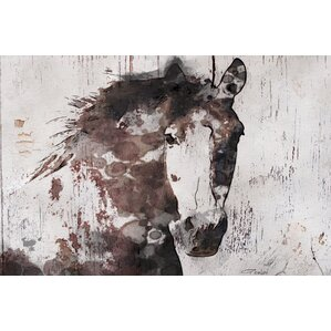 Gorgeous Horse Canvas Print
