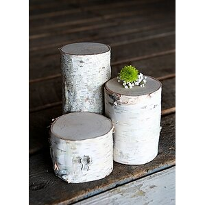 3-Piece Decorative Birch Pillar Set